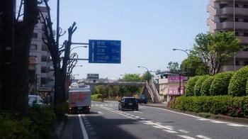 DSC_1168 (640x360).jpg